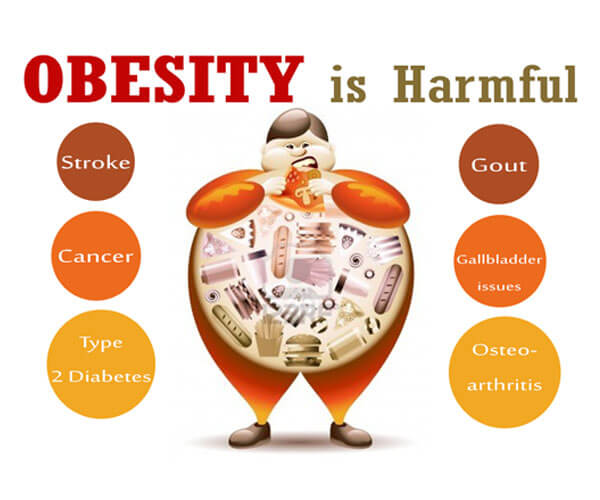 Obesity is harmful image mtc